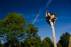 A tall bird house. With trees in the background and blue sky Stock Photography