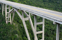 Tall bridge crossing a green valley. Tall bridge crossing a green tropical valley Royalty Free Stock Photography
