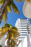 Tall building of classic style in Miami Beach Royalty Free Stock Images