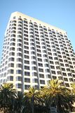 Tall building & palm trees Stock Photo
