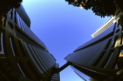 Tall buildings. A vertical, fish eye view of modern tall building in Phoenix, Arizona Royalty Free Stock Photos