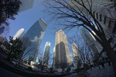 Fisheye View of Downtown Tokyo. Tall Buildings in Downtown Tokyo Viewed Through a Fisheye Lens royalty free stock photography