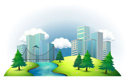 Tall buildings in an island with a river and pine trees Royalty Free Stock Image