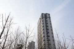 Tall buildings. The tall buildings in the winter from the perspective of Stock Images