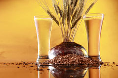 Tall cool beer wheat and barley. A couple of very cold glasses and the stuff beer is made with Royalty Free Stock Photos
