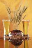 Tall cool beer wheat and barley Stock Photos
