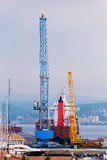 Tall crane Royalty Free Stock Photos