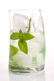 Tall drink with mint and ice Stock Photos