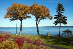 Tall Fall Trees. Overlooking Seneca Lake, New York Stock Photos