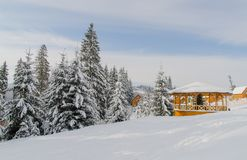Tall fir trees covered with snow and a small wooden house. Winter daytime landscape. Stock Photos