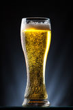 Tall glass of beer over a dark background Royalty Free Stock Images