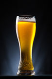 Tall glass of beer over a dark background Royalty Free Stock Photos