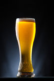 Tall glass of beer over a dark background Stock Photography