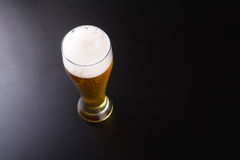 Tall glass of lager Royalty Free Stock Photos