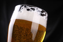 Tall glass of lager Stock Images