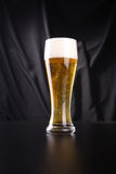 Tall glass of lager Royalty Free Stock Photography