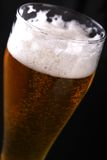 Tall glass of lager Royalty Free Stock Image