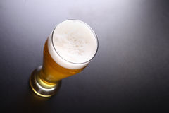 Tall glass of light beer Royalty Free Stock Photography