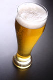 Tall glass of light beer Royalty Free Stock Photos