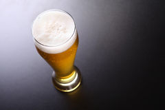 Tall Glass Of Light Beer Stock Image