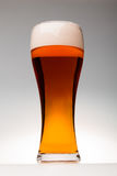 Tall glass of pilsner beer with head. Full pilsner glass of pale lager beer with a head of foam on grey background Royalty Free Stock Photo