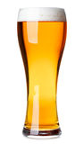 Tall glass of pilsner beer with head. Full pilsner glass of pale lager beer with a head of foam  on white background Stock Photo