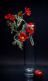 Tall glass vase with red flowers and apple on gray Royalty Free Stock Image