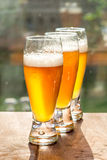 Tall glasses of golden beer in summer sunlight. Stock Photography