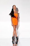 Tall Graceful Woman. In mini skirt and high heels posed in studio Stock Photo