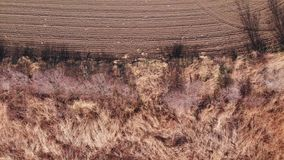 Tall grass field to a plowed dirt field stock video
