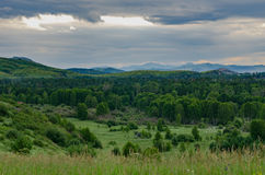 Tall grass meadow with a settlement, the forest, mountains and cloudy sky Royalty Free Stock Image