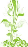Tall green plant Stock Photo