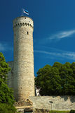 Tall Hermann, a historical tower in Tallinn, the capital of Estonia. Royalty Free Stock Photos