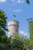 Tall Hermann - Toompea castle tower in Tallinn Royalty Free Stock Photo