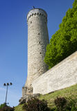 Tall Hermann - a tower of the Toompea Castle on Toompea hill. Tallinn, Estonia Stock Photo