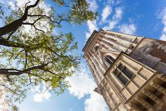Tall historic building. Bottom view with tree on the side Royalty Free Stock Photo