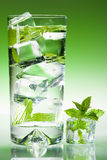 Tall Iced Drink With Mint Royalty Free Stock Photos