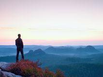 Tall man in black on the cliff with heather bush. Sharp rocky mountains park Royalty Free Stock Images