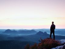 Tall man in black on the cliff with heather bush. Sharp rocky mountains park Stock Photography