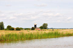 Tall Mill drainage mill Stock Photo