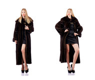 The tall model wearing fur coat Stock Photos
