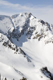 Tall Mountain. A Tall Ski Mountain Covered in Fresh Powder stock images