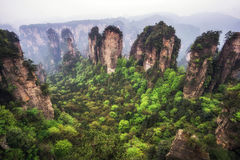 Tall mountain peaks of yuanjiajie royalty free stock images