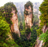 Tall mountain peaks of yuanjiajie royalty free stock photo
