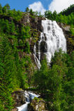 Tall norwegian waterfall and coniferous forest Stock Photography