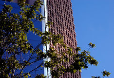 Tall office building Stock Images