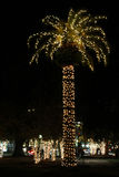 Tall palm tree with Christmas lights in Charleston, South Carolina. Royalty Free Stock Photos