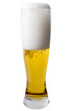 Tall Pilsner Glass of Beer Royalty Free Stock Image
