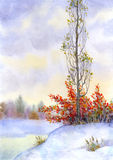Tall poplar among the snow-covered steppes. Watercolor landscape. Tall poplar among the snow-covered steppes of the icy river Stock Photos