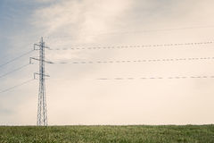 Tall pylons on a green field Stock Image